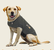 Thundershirt's patent-pending design applies a gentle, constant pressure that has a dramatic calming effect for most dogs. Scroll to bottom of page for specifics on sizing, embroidery and product details.